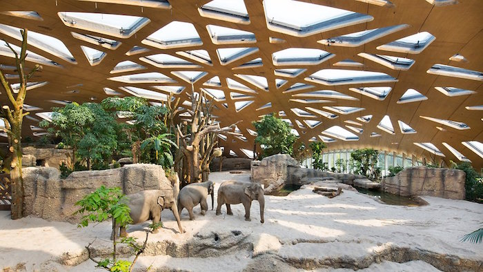 Muslim friendly places to visit in Zurich Zoo
